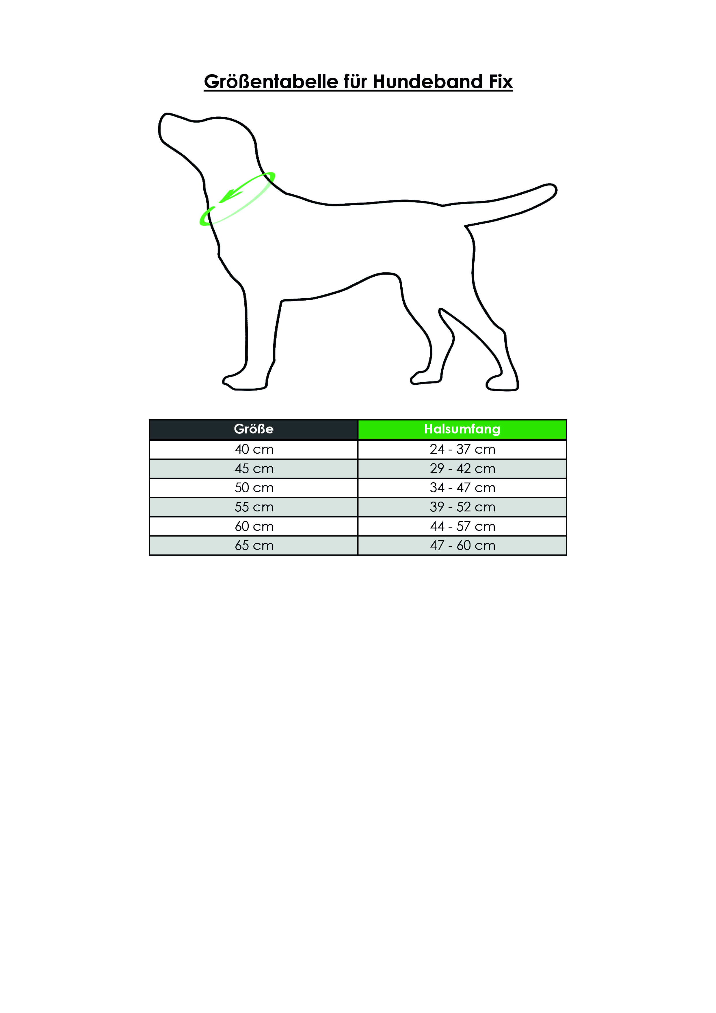 Hunde Signalhalsband 40-55 cm
